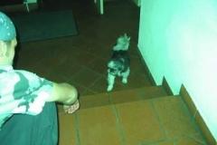 conventus_2_20070216_1172733560