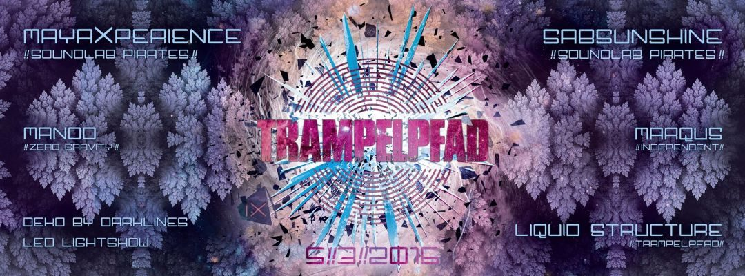 Trampelpfad IX